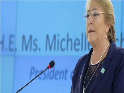 ميشيل باشليه، المفوضة السامية لحقوق الإنسان بالأمم المتحدة