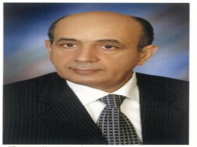 المستشار محمد محمود فرج حسام الدين