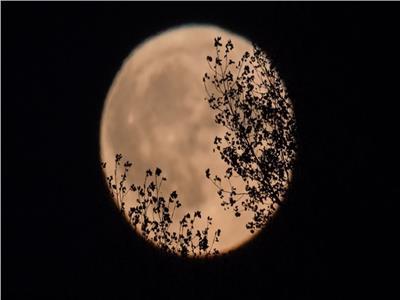 """""""قمر الحصاد"""" قد ينشر طاقة غضب وتشوش وإحباط"""