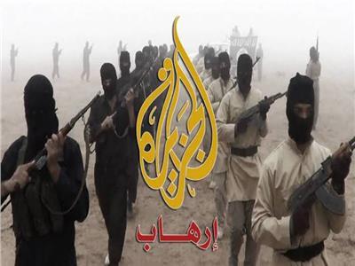 قناة الجزيرة دائمة التحريض ضد مصر وتعمل على نشر الإرهاب