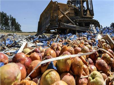 اعتقد المواطنون في فرنسا أن البطاطس تسبب الجذام والطاعون