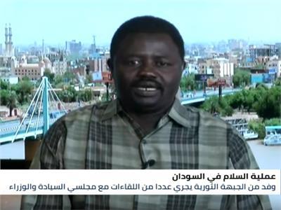 المحلل السياسي أحمد عبد الغني
