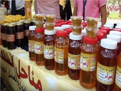 «البرسيم» أبرزها.. كيف تحدد جودة عسل النحل؟