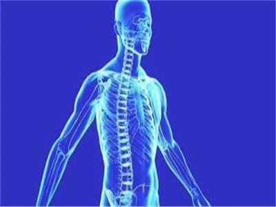 دراسة: العناصر الكيميائية الضارة في جسم الإنسان أعلى مما كان معتقدا
