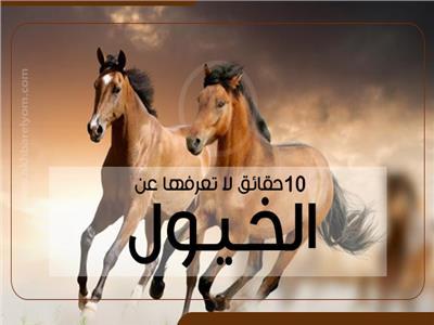 10 حقائق لا تعرفها عن الخيول