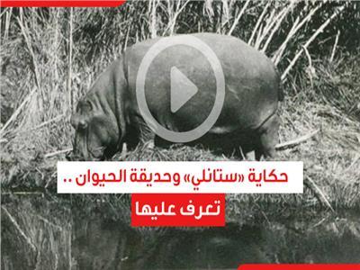 حكاية «ستانلي» وحديقة الحيوان