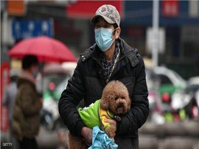 نقل الحيوانات الأليفة لفيروس كورونا