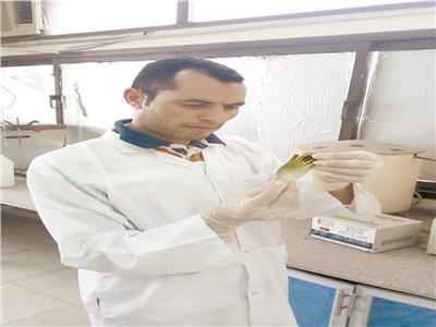 د. إسماعيل حجاج