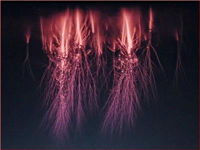 ظاهرة كونية نادرة.. الكائنات الفضائية تغزو الأرض
