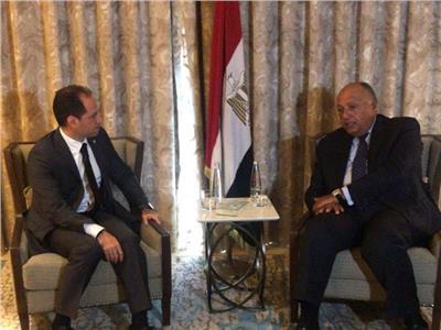 وزير الخارجية سامح شكري خلال اللقاء