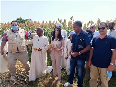 وفدا وزارتي الزراعة والتعاون الدولي زيارة المشروعات الزراعية بمحافظة الاقصر