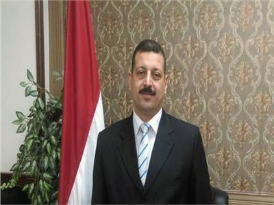 الدكتور أيمن حمزة، المتحدث الرسمي باسم وزارة الكهرباء