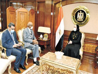 وزيرة الصناعة خلال جلسة المباحثات مع السفير السودانى بالقاهرة