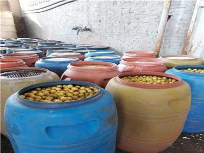 وزارة التموين بالغربية تضبط 700 طن مخلل فاسد