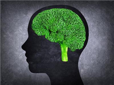 أفضل 5 أطعمة للحفاظ على صحة عقلك