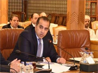 أمين مجلس النواب محمود فوزي