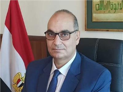 الدكتور محمد فوزي مساعد وزير الصحة