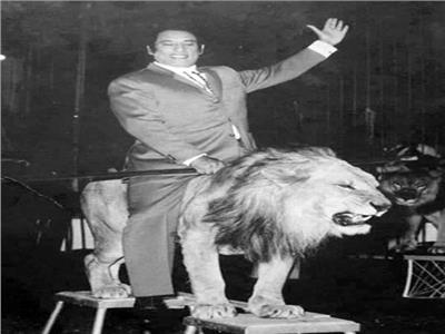 محمد الحلو يمتطى الأسد « سلطان » داخل حلبة السيرك