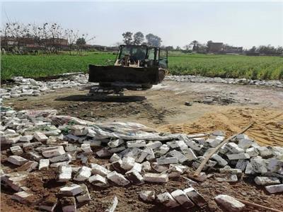 المنوفية : إزالة (13) حالة تعدى على الأراضى الزراعية فى المهد ...صور