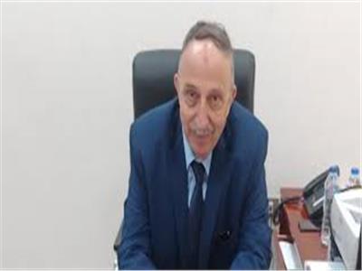 محمد هشام الحموي، مستشار وزير المالية