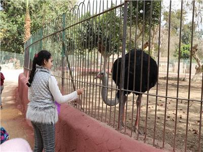 افتتاح حديقة الحيوان للجمهور