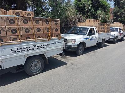 توزيع 450 كرتونة مواد غذائية بقري زفتي ضمن«حياة كريمة»