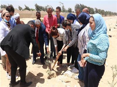 نائب المحافظ تتفقد قرية كفر حلاوة بمركز أطفيح وزراعة 1100شجرة مثمرة بالمركز