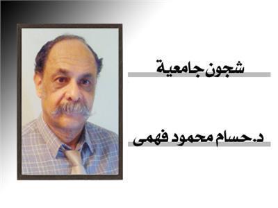 حسام محمود  فهمى