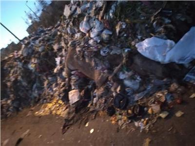 تلال من القمامة بمدينة سمنود بالغربية