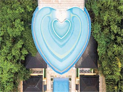 السباحة فى «القلب»