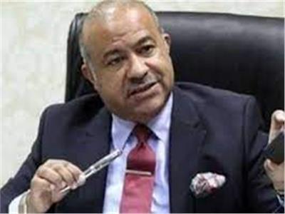 الدكتور إبراهيم عشماوي، مساعد أول وزير التموين