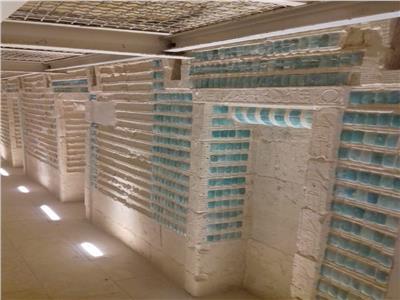 مقبر زوسر في سقارة