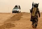"""مقتل 6 من """"داعش"""" جراء قصف مدفعي في الأنبار"""