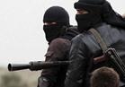 """المرصد السوري: مدينة الرقة خالية من مسلحي """"داعش"""" تماما"""