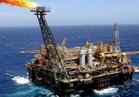 البترول: شركات عالمية تعلن رغبتها في الاستثمار بمياه البحر الأحمر