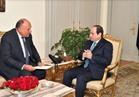 السيسي يتلقى تقريراً من وزير الخارجية حول نتائج جولته العربية بالأردن و5 دول خليجية