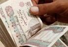 300 جنيه منحة المولد النبوي لجميع العاملين بـ«الأوقاف»