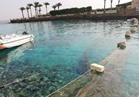 «الانقاذ البحري» تتلقى بلاغًا بتلوث مياه البحر الأحمر بالسولار