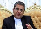 السفير الإيراني بالأردن : إيران لم تزود الحوثيين بالسلاح