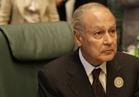 أبو الغيط : نتضامن مع السعودية في مواجهة التهديدات الخارجية