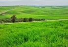 هدى صبري: تمويل المشروعات الخضراء خطوة جيدة للحفاظ على البيئة