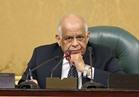 عبدالعال: وزير الخارجية ليس مسئولا عن تصريحات مسئولي الدول الأخرى