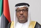 السفير الإماراتي بالقاهرة: نقف بكل عزم وقوة بجانب مصر في حربها ضد الإرهاب