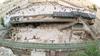 رئيس مركز القدس الدولي: إسرائيل تبنى تاريخا مزيفا عبر مدينة تحت الأرض