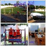 بعد قليل.. بدء جولة غادة والي في الإسكندرية لافتتاح وتفقد عدة مشروعات