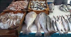 نرصد أسعار الأسماك في سوق العبور اليوم