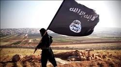 الجيش الروسي: قضينا على 70 ألف مسلح في سوريا