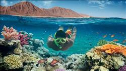 «جمعية مسافرون»: 113.7 مليار دولار عائد السياحة خلال 15 عامًا