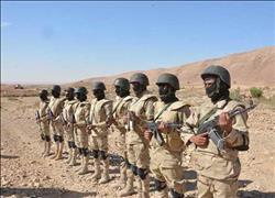 تراجع معدلات الإرهاب والقضاء على أسطورة جبل الحلال.. حصاد القوات المسلحة في 2017