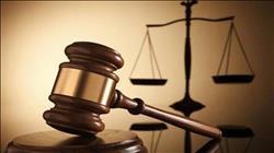 الثلاثاء.. الحكم على 30 متهمًا في قضية «خلية أوسيم»